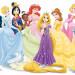 迪士尼公主系列王子祕密大公開