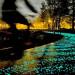 梵高(Vincent van Gogh)的家鄉荷蘭設計出「會發光」的星夜車道