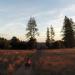 無人機市場將殺出勁敵! GoPro宣布明年推出KARMA