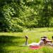 春季來臨了~全美15個最適合春遊的公園!(上集)