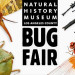 Bug Fair at Natural History Museum 昆蟲博覽會 (5/18-19)