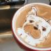 巧手+創意+熱情  超人氣三藩市咖啡師創造出其他咖啡師也甘拜下風的拉花作品!