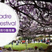 【LA乐妈】Sierra Madre Wistaria Festival紫藤花节 + 乐妈私房行程推荐 (3/18)