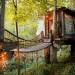 夢想清單多一項!Airbnb上全球最受歡迎的房間是這間夢幻樹屋!