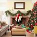 大伙不用再争  2017年度最狂圣诞树装饰品已出现!