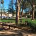 Santa Monica公园成游民聚集地 警方:将加强巡逻
