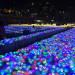 耶诞跨年气氛渐浓…港澳光影节将接力登场!