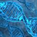 熬夜一晚DNA断裂率、损伤大增 增患癌风险