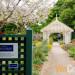 【北加旅遊】跟隨春日腳步,花現矽谷 Spring Tour (4/26-27)
