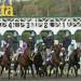 接連出事!Santa Anita Park數月內超過20匹賽馬死亡