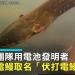 影/最強放電生物!亞馬遜雨林發現新品種電鰻