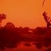 這不是火星!森林大火釀霾害 印尼驚見「血色天空」
