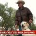 美國女子腿部中槍 槍手是7個月大拉布拉多犬!