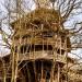 世界最大树屋遭祝融!苦盖多年15分钟内烧成一堆灰烬