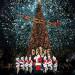 Christmas at The Grove 圣诞树亮灯仪式 (11/17)