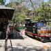 【北加旅遊】湖區追火車與旋轉木馬的一日綠色小旅行