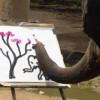 大象會畫畫!?