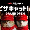 Pizza Hut 請來超可愛貓咪當店員?!