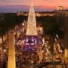 橙縣最有名氣Fashion Island商圈傳統聖誕樹亮燈儀式 (11/22-23)
