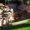 巴塞罗那一名男子跳进动物园的狮子窝中~最终被水枪解救(内附视频)