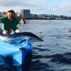 摸魚摸到小白鯊?! 港內釣魚卻意外抓到小鯊魚