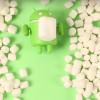 甜甜的!Android新版定名「棉花糖」