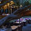 LA 13家最適合約會的餐廳!
