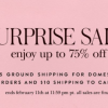 Kate Spade Surprise Sale 又来了,低至75% off!