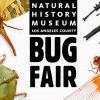 Bug Fair at Natural History Museum 昆蟲博覽會 (5/18-19)