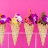 想吃冰品又有罪惡感? 不怕! Frozen Fruit Co 於Santa Monica試營業!