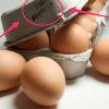 八個你不可不知[蛋蛋]的秘密
