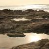 [小編帶路] Little Corona Del Mar 浪漫熱點 + Tide Pool 玩耍