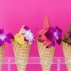 倒數4天~Santa Monica 的 Frozen Fruit Co 免費送大家吃今夏最美最健康的水果冰!~