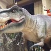 【AV的美国大冒险】到 Jurassic Quest 跟恐龙玩耍去!