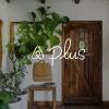 不用再怕恐怖经历!全新Airbnb Plus服务严选优质住宿