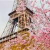 春回大地遊世界!小編精選5個四月最美旅遊好去處!
