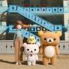 超治癒~Netflix明年4月推懶懶熊動畫!