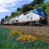2019年出游优惠!Amtrak指定路线「一人价钱、二人同行」