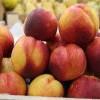 18州份受影響!桃子、李子或含李斯特菌需召回