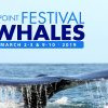 Dana Point Festival of Whales 鯨魚節周末慶典 (3/7-8, 3/14-15)