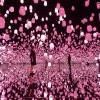 [影] 櫻花季限定!teamLab「呼應燈森林」變身粉紅色超浪漫