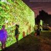 本週末限定!Arcadia植物園上演「夜間藝術光影秀」 (2/27-3/3)