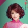 「大庄家赌场度假村」经典琴歌蔡琴2019演唱会