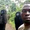 大猩猩自拍爆紅 園方解釋:牠們就愛搞怪