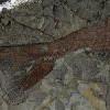 小行星撞地球致恐龙灭绝 美中西部发现化石线索