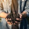 全美首例 美华盛顿州人类遗体堆肥合法化