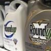 美环保署:除草剂Roundup不太可能致癌