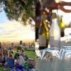 Barnsdall Fridays Wine Tasting 仲夏品酒夜 (5/31-9/6)