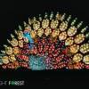 秋冬打卡好去處!Arcadia植物園年度月光森林燈籠藝術節「Moonlight Forest」(11/9-1/12/2020)