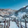 白色假期 TripAdvisor精選日本、加拿大人氣滑雪勝地